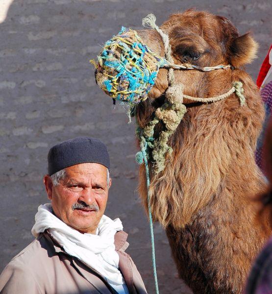 2109-開羅安阿赫拉比蓄水池-塔樓前的駱駝生意人.JPG