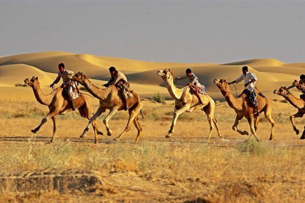 Jaisalmer-DesertFestival-CamelRace.jpg